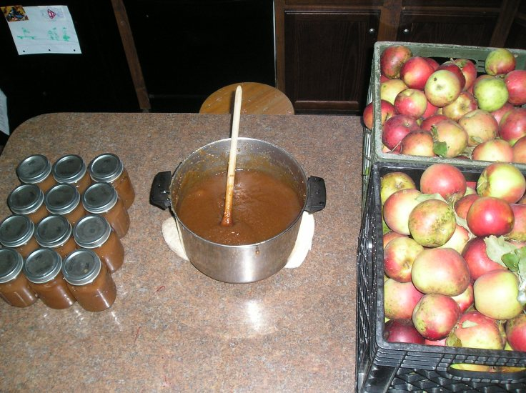"""Anyone can count the seeds in an apple, but only God can count the number of apples in a seed.""""  -Robert H. Schuller"""