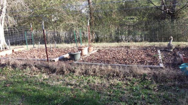 garden 01.16